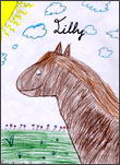 Lilly the Horse